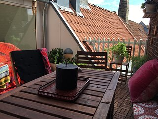 Big modern apartment with roof terrace in the heart of Copenhagen - Frederiksberg vacation rentals