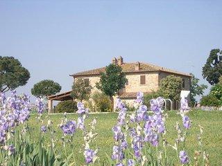 Brolio Quinto - Typical Farmhouse in tuscan countryside near Cortona - Brolio vacation rentals