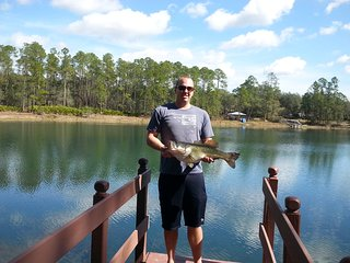 Clear Blue Lake. Pets OK. Wi Fi. Gainesville Area - Hawthorne vacation rentals