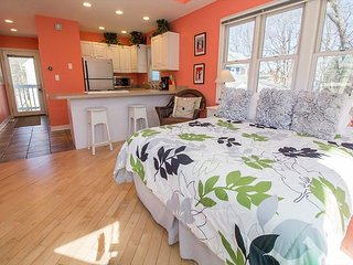 Couples Getaway! Short stays allowed. Studio with Queen + HOT TUB - Michigan City vacation rentals