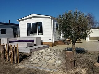 4 Beachhouse, 1km from Sea & Beach, Swimming Pool, Hiking & Bicyling, wifi - Petten vacation rentals