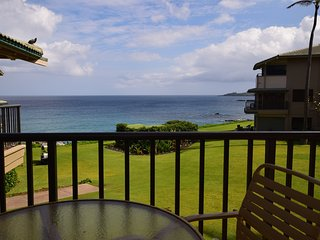 Kapalua Bay Villas  B29B3 - Kapalua vacation rentals