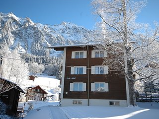 Breathtaking views, mountain air, a peaceful get-away; great for families - Wengen vacation rentals
