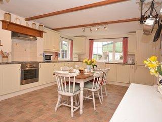 44019 Cottage in Dartmoor Nati - Bere Alston vacation rentals