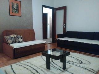 Comfortable 1 bedroom Uzice Apartment with Television - Uzice vacation rentals