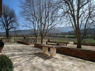 Nice 11 bedroom Villa in Montjustin - Montjustin vacation rentals