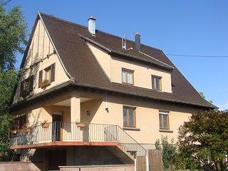 gite les marguerites avec garage et jardin proche route du vin labellisé 3* - Saint-Hippolyte vacation rentals