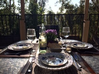 Secluded Private Retreat w/ Pool and Hot Tub - Pacific Beach vacation rentals