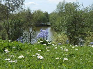 Bluebell Yurt with private hot tub and free fishing over looking Lily Lake - Hatfield Peverel vacation rentals