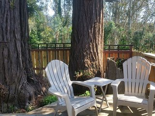 Charming and Classy Cottage in Downtown Arcata - Arcata vacation rentals
