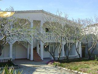 Zelic house - Traper apartment - Vir vacation rentals