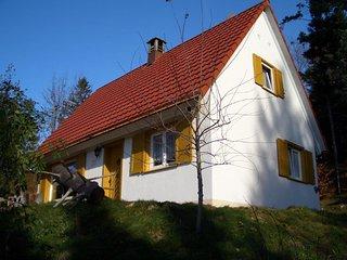 Freistehendes Haus mit großem Grundstück am Nationalpark - Sasbachwalden vacation rentals