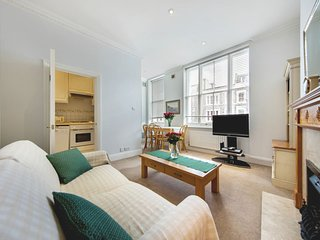 Bright and comfy 2 bed 2 bath in Earl's Court - London vacation rentals