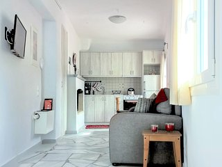 Cozy Studio-Apartment in a Tiny Cycladic Village - Panormos vacation rentals