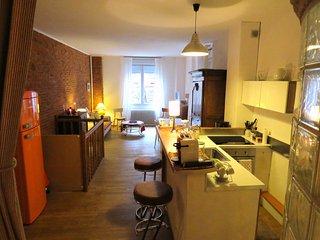 PETIT LOFT TOULOUSAIN CENTRE VILLE - Toulouse vacation rentals