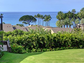 1 bedroom Apartment with Hot Tub in Wailea - Wailea vacation rentals