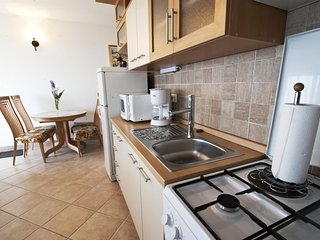 Nice Studio with Internet Access and DVD Player - Medveja vacation rentals