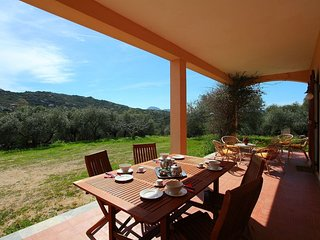 Typical sardinian house in the middle of the nature. - Porto Rotondo vacation rentals
