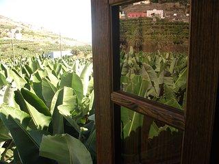 Charming Country house Hermigua, La Gomera - Hermigua vacation rentals