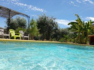maison typique avec piscine au cœur du Portugal - Proenca-a-Nova vacation rentals