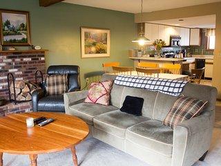 Cozy 3 bedroom Killington House with Internet Access - Killington vacation rentals