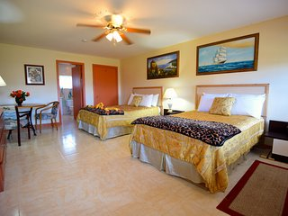 1 bedroom Villa with Television in Cocoa Plum Cay - Cocoa Plum Cay vacation rentals