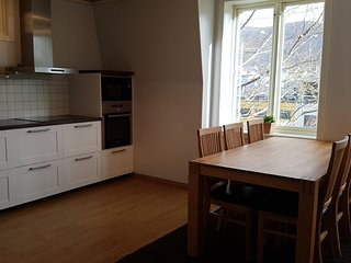 Nice, spcious apartmen at Minde - Bergen vacation rentals