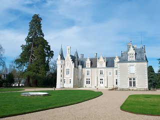Chambre d'hôtes au château Vallée de la Loire - Azay-sur-Cher vacation rentals