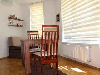 1 bedroom Apartment with Internet Access in Ilidza - Ilidza vacation rentals