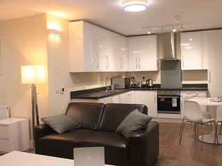 1 bedroom Apartment with Internet Access in Slough - Slough vacation rentals