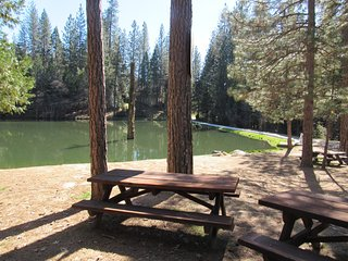 """""""Tree House"""" mountain home 15 minutes from Yosemite - Oakhurst vacation rentals"""