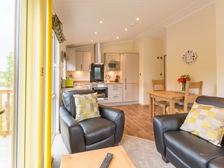 The Hedgerow at Littlemere -Bespoke Lodges - Sleep 2 - Woodburner, Lake District - Selside vacation rentals
