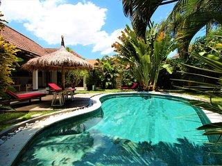 Big luxury & peaceful  Villa/ pool table/ Center Seminyak. - Seminyak vacation rentals