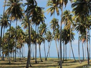 Cabo de Santo Agostinho - Praia do Paiva .- Flat - Cabo de Santo Agostinho vacation rentals