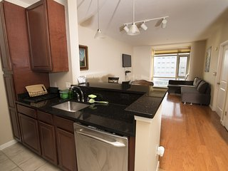 Luxury condo mins from DC & quick access to Metro - Hyattsville vacation rentals
