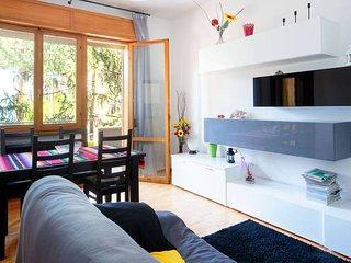 Grande appartamento a due passi dal mare 100 m2 - Viserba vacation rentals