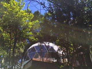 Chira Glamping Golden Toad Lexury Tent - Santa Elena vacation rentals