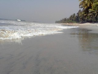 Purvaj Beach Resort, Devbag, Next to Tarkarli - Malvan vacation rentals