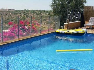 VILLA RENTAL ISRAEL POOL NEAR JERUSALEM , PISCINE  LOCATION VACANCES Kosher - Beit Shemesh vacation rentals