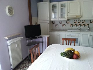 A Casa di Elsa Appartamento grande, tranquillo e signorile, ottimo per famiglie - Fiorenzuola d'Arda vacation rentals