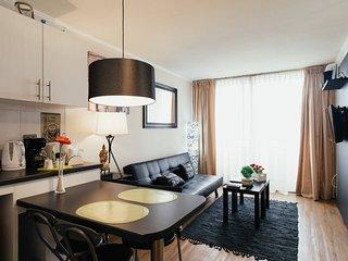 A4 Nice apartment comfortable and cozy !! - Santiago vacation rentals