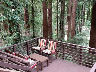 The Hilltop Cabin - Fabulous Views of Redwoods - Boulder Creek vacation rentals
