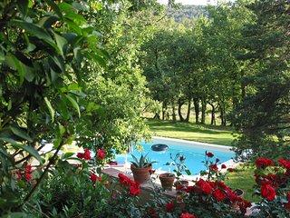 gîte avec piscine dans le luberon - Murs vacation rentals
