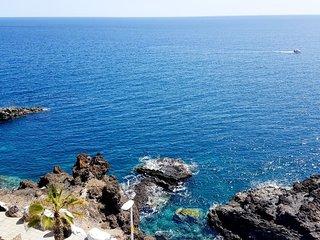 BlueOcean apartment / Amazing Oceanview. - Los Abrigos vacation rentals