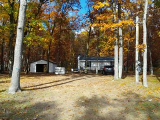 Bear Cabin in the Manistee National Forest near Irons - Wellston vacation rentals