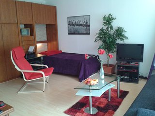 Romantic 1 bedroom Bad Bergzabern Apartment with Internet Access - Bad Bergzabern vacation rentals