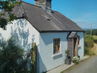 17th Century Lodge near Myddfai ideal for hikers and birdwatchers - Llangadog vacation rentals