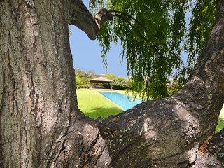 M08GC Amazing country house with 5000m2 of garden - Santa Brigida vacation rentals