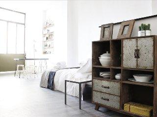Beautiful loft Santo Spirito - Florence vacation rentals