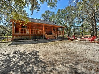 NEW! 2BR Colonel's Island Cabin on 3 Woodland Acres - Midway vacation rentals